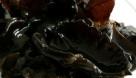 第五大类:最有效的清肠菌藻 菌藻类的食物有香菇、海带、紫菜、黑木耳等这些食物具有植物化学物质,可以防癌抗癌,排除重金属效果好。 重点介绍:海带和紫菜 它们含大量胶质。能通便促使体内的放射性毒物随同大便排出体外。肿瘤病人接受放化疗时多吃海带是有益的。它们都属碱性食品,有净化血液作用。常吃海带和紫菜能降低癌症发生率 重点介绍:黑木耳 黑木耳能抑制血小板凝聚,可降低胆固醇,黑木耳中的胶质,有助于将残留在人体消化系统内的灰尘杂质吸附和聚集并排出体外,清涤胃肠。