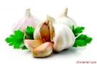 1、大蒜 许多研究都证实大蒜具有防癌抗癌能力,大蒜中的脂溶性挥发性油能激活巨噬细胞,提高机体的抗癌能力,还含有一种含硫化合物,也具有杀灭肿瘤细胞的作用。