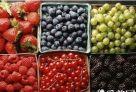 """""""酸果病"""" 在夏天有针对性地食用水果,可达到滋养作用,但如果不了解自己的体质和水果的属性,进食不当,反而会得 """"水果病""""。像杨梅、李子等酸性水果,其中所含的酸性物质不易被氧化分解,容易导致体内偏酸,一般不宜多吃。 对于有溃疡病的患者,不宜多吃酸性水果;对于有便秘的人,应少吃酸性水果,以免加重便秘。专家还提醒,香蕉、西红柿、柿子、橘子、山楂等,都不宜空腹吃。同时,糖尿病患者和易胀气的人,吃西瓜要控制量。"""